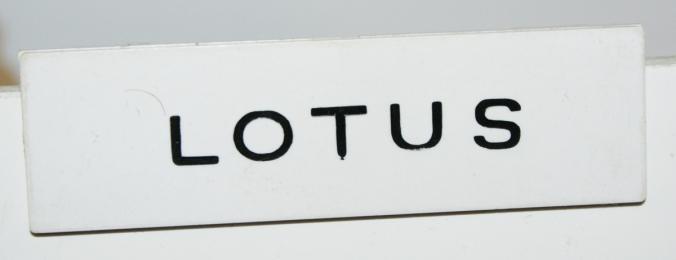 A206 Lotus